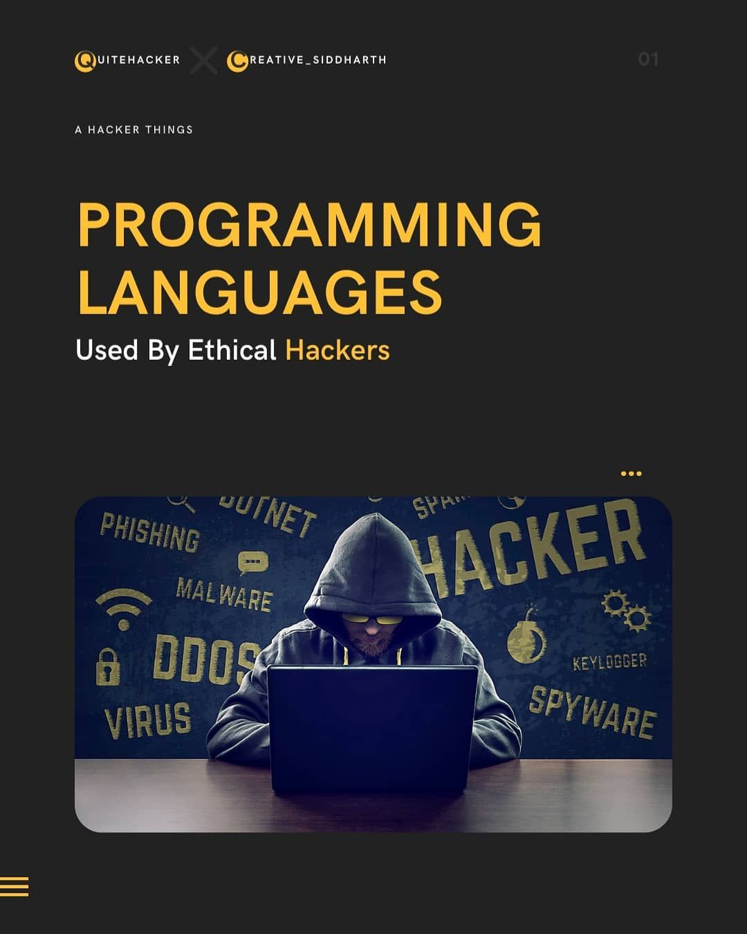 Programming languages used by ethical hackers