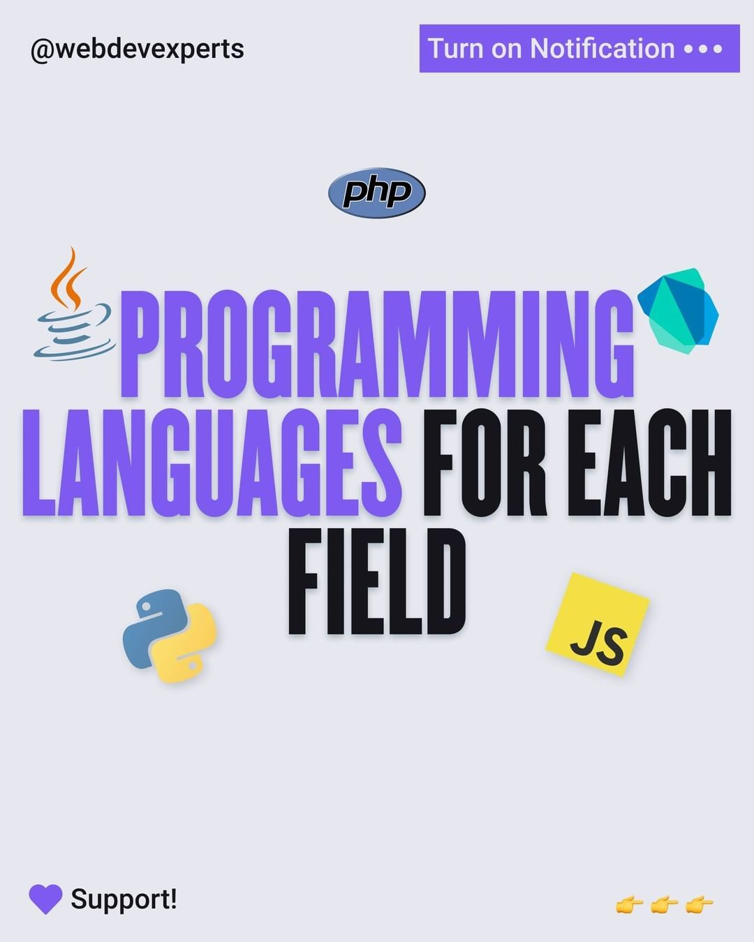 Programming languages for each field